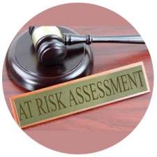 risk_assessment_300